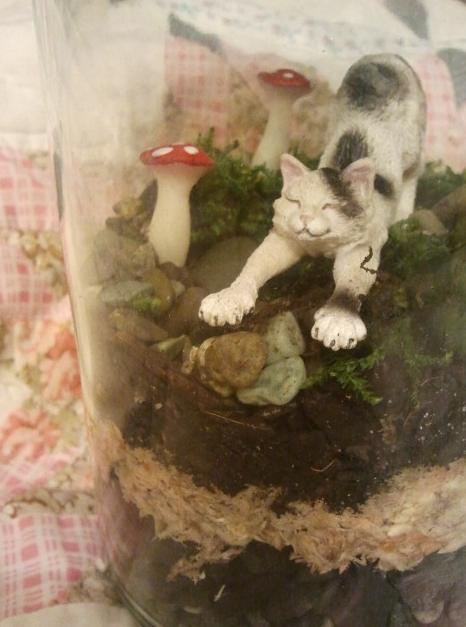 Completed terrarium from the little green project