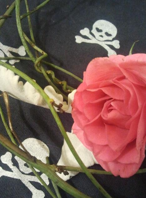 Rose and vine